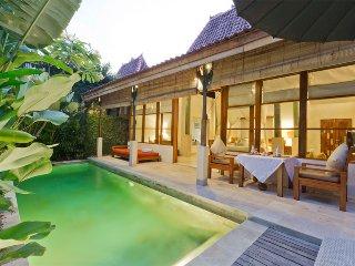 1 bedroom villa bidadari  seminyak - Seminyak vacation rentals