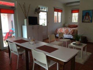 Garden Studio Apartment in Quebradillas. - Quebradillas vacation rentals