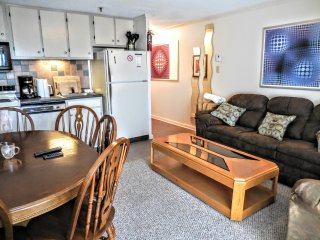 2BR/2BA Ski In/Out Condo next to Snowshoe Village & Slopes! - Snowshoe vacation rentals