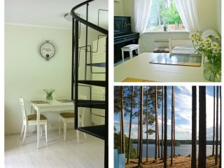 House near the lake and the forest - Priozersky District vacation rentals