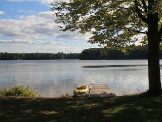 Four Seasons on Bass Lake - Interlochen vacation rentals