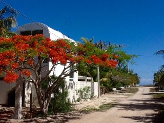 At 100 meters  from the sea, fully furnished house - Progreso vacation rentals