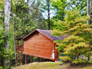 Mountain Laurel Cabin in the Pigeon Forge Area - Pigeon Forge vacation rentals