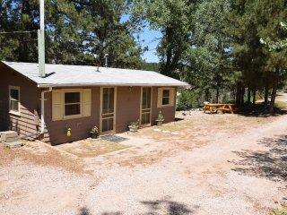 American Dipper Cabin   3 - Hill City vacation rentals