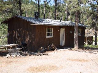 Chickadee Cabin   6 - Hill City vacation rentals