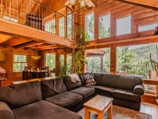 Contemporary Log Cabin Nestled in Towering Pines - Mount Lemmon vacation rentals