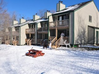 1 bedroom House with Wireless Internet in Canaan Valley - Canaan Valley vacation rentals