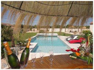 """""""Un Gîte en provence"""" piscine chauffée jacuzzi - Bedarrides vacation rentals"""