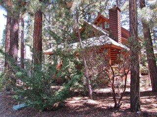 Perfect 2 bedroom House in Moonridge with Fireplace - Moonridge vacation rentals