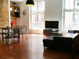 Toulouse Capitole : Grand appartement T3 - Toulouse vacation rentals