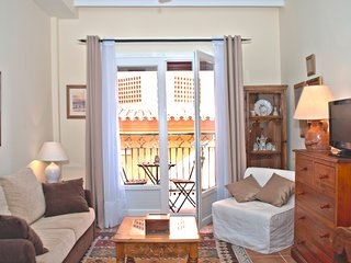 Charming Apartment in the heart of Costa del Sol - Benahavis vacation rentals