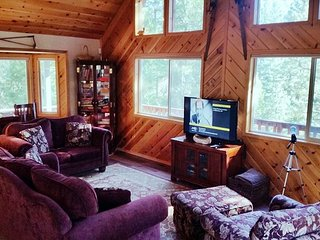 "Peaceful ""Mountain Getaway"" located in a quiet area of Blue Lake Springs - Arnold vacation rentals"