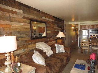 Lake Dillon Condos 105 - Dillon vacation rentals