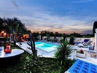 AMAZING VILLA WITH BIG GARDEN WITH OLIVE TREES - Zadar vacation rentals