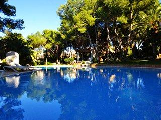 Bright Condo with Internet Access and A/C - Santa Ponsa vacation rentals