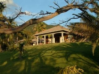 Nice 3 bedroom Woodlands House with Internet Access - Woodlands vacation rentals
