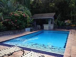 Charming 3 bedroom Woodlands House with Internet Access - Woodlands vacation rentals