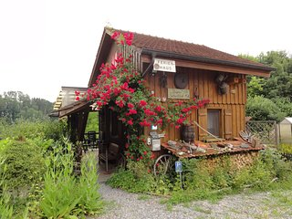 Ferienhaus Bijou-Sitterblick Zwischen Bodensee & St -Gallen. Natur pur. - Bischofszell vacation rentals