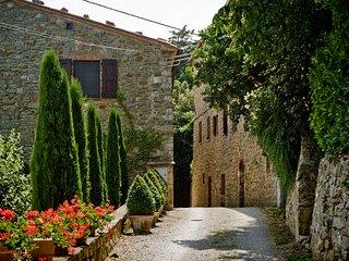 Charming 2 bedroom House in Castiglioncello del Trinoro - Castiglioncello del Trinoro vacation rentals