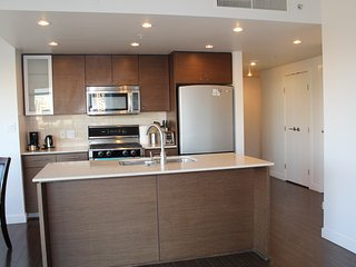 Comfy 2BD/2BA Apt near Ramada Hotel Airport - Richmond vacation rentals