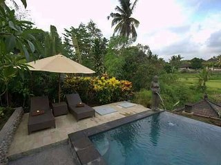 Kukuh 2Bdrm, Quiet, Wifi, Pool, Rice Field View - Sayan vacation rentals