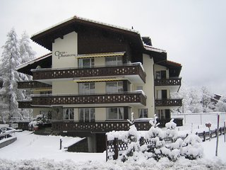 Central spacious Chalet apartment, no car required - Klosters vacation rentals
