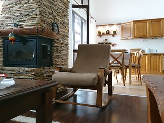 Cozy and spacious penthouse in Bansko - Bansko vacation rentals