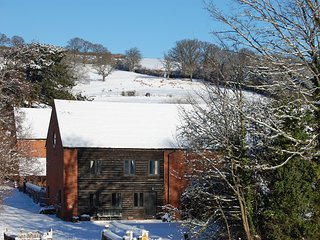 Beautiful Barn with Fireplace and Central Heating - Ewyas Harold vacation rentals