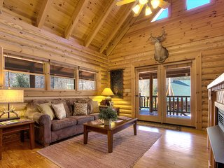 Nice Cabin with Central Heating and Television - Sevierville vacation rentals