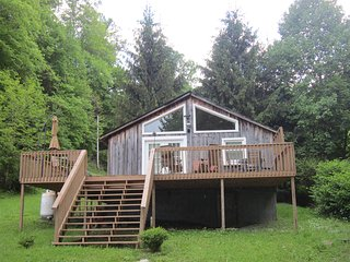 Bright Roan Mountain House rental with Internet Access - Roan Mountain vacation rentals