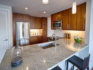 Gorgeous Spacious Luxury Apt 1-Bedroom Avail - Philadelphia vacation rentals