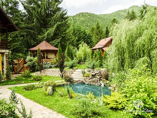 Atelierul Zanei - Getaway Retreat & VintageArtGallery - Tarcau vacation rentals