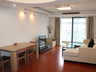 High Fl/Spacious nd Open 2bdr/2lvr at Zhenping Rd - Shanghai vacation rentals