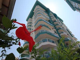 1 B/R Apartment Angels Home Marwan - Mahmutlar vacation rentals