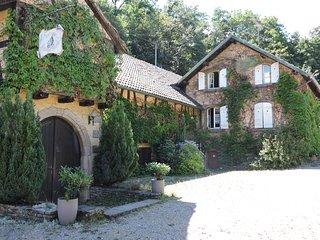 Domaine de l'Ancienne Scierie d'Andlau 3*   95m2 - Andlau vacation rentals