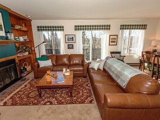 3 bedroom Condo with DVD Player in Lake Placid - Lake Placid vacation rentals