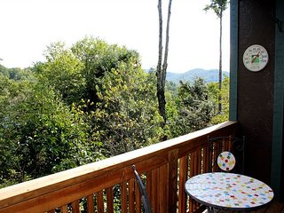 Now $175/night now thru Jan 31! Call for Lowered Rate! - Boone vacation rentals