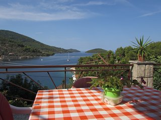 Sea view apartment with terrase VL - Vela Luka vacation rentals