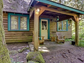 Quintessential dog-friendly cabin in the woods, within short walk of the river! - Rhododendron vacation rentals