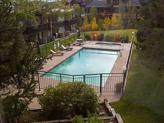 Snug 1BR Snowmass Village Condo - Ski-in/Ski-out Access & Private Balcony - Snowmass Village vacation rentals