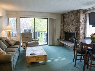 Ski In Ski Out, 1 Bedroom Snowmass Condo, Cozy and Comfortable - Snowmass Village vacation rentals