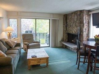Ski In Ski Out, 1 Bedroom Lichenhearth Condo, Cozy and Comfortable - Snowmass Village vacation rentals