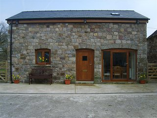 Bright Cottage with Television and DVD Player - Ystradgynlais vacation rentals