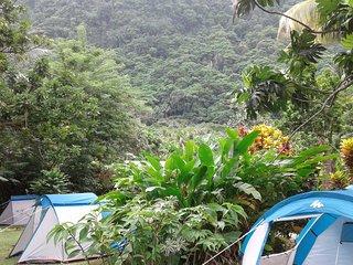 "Big banana campground "" BOUYON "" - Soufriere vacation rentals"