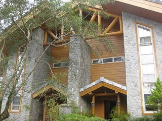 Forest Log Cabin inside Camp John Hay - Baguio vacation rentals