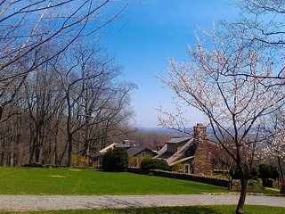 Idyllic Restored 18c cottage, Views*All Amenities. - Bluemont vacation rentals
