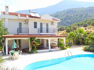 8 bedroom villa for large family holidays - Ovacik vacation rentals