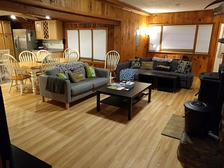 Family Lodge btwn Stratton & Mt. Snow - Stratton Mountain vacation rentals