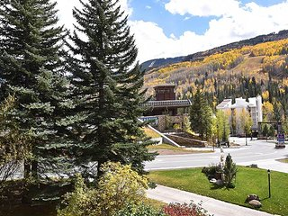 Vantage Point #209 - Vail vacation rentals