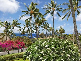 Nice Apartment with Internet Access and Water Views - Poipu vacation rentals